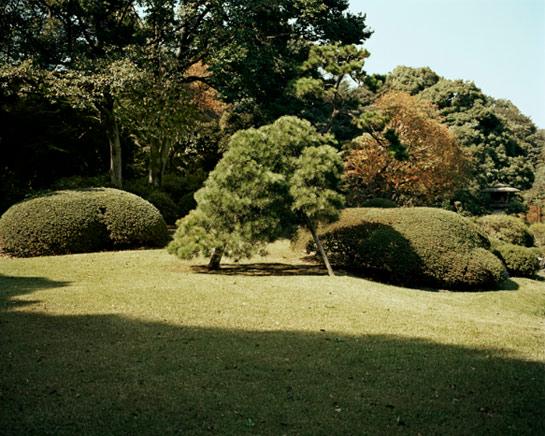 EmilyShur_Japan.jpg